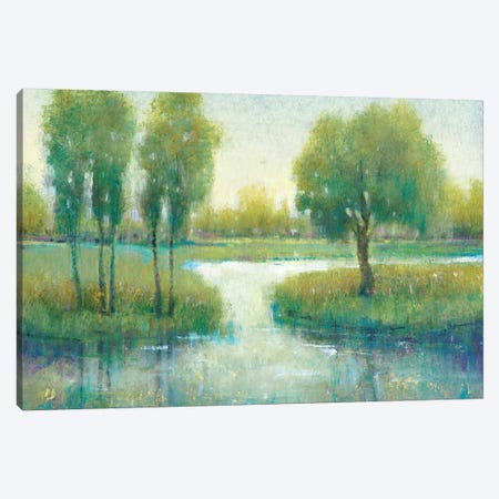 Winding River I Canvas Print #TOT444} by Tim OToole Canvas Artwork