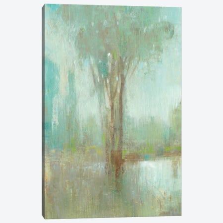 Mist in the Glen I Canvas Print #TOT448} by Tim OToole Art Print