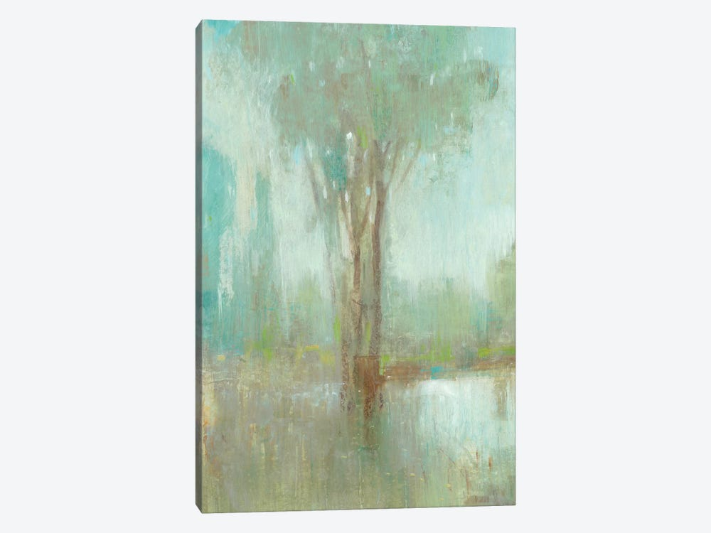 Mist in the Glen I by Tim OToole 1-piece Canvas Art