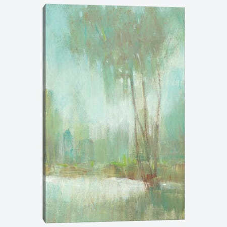 Mist in the Glen II Canvas Print #TOT449} by Tim OToole Canvas Print
