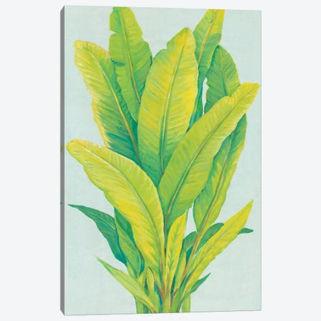 Chartreuse Tropical Foliage I Canvas Print #TOT450} by Tim OToole Canvas Artwork