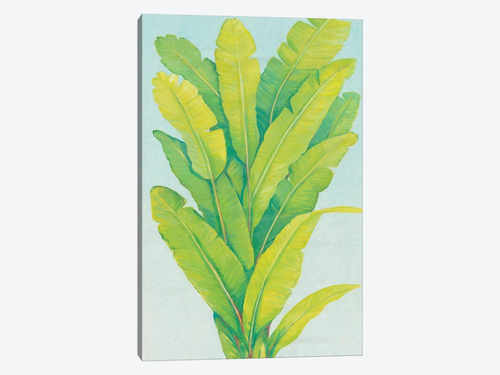 Chartreuse Tropical Foliage II by Tim OToole 1-piece Canvas Wall Art
