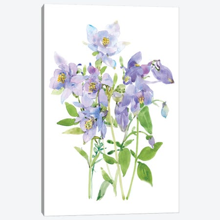 Columbine Spray I 3-Piece Canvas #TOT456} by Tim OToole Art Print