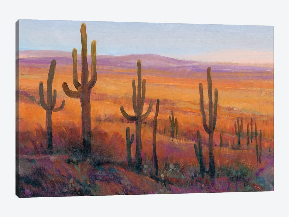 Desert Light I by Tim OToole 1-piece Canvas Print