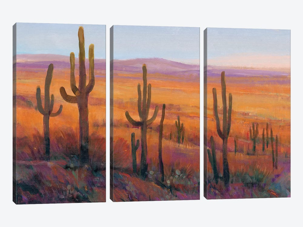 Desert Light I by Tim OToole 3-piece Art Print