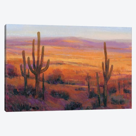 Desert Light II Canvas Print #TOT459} by Tim OToole Canvas Art