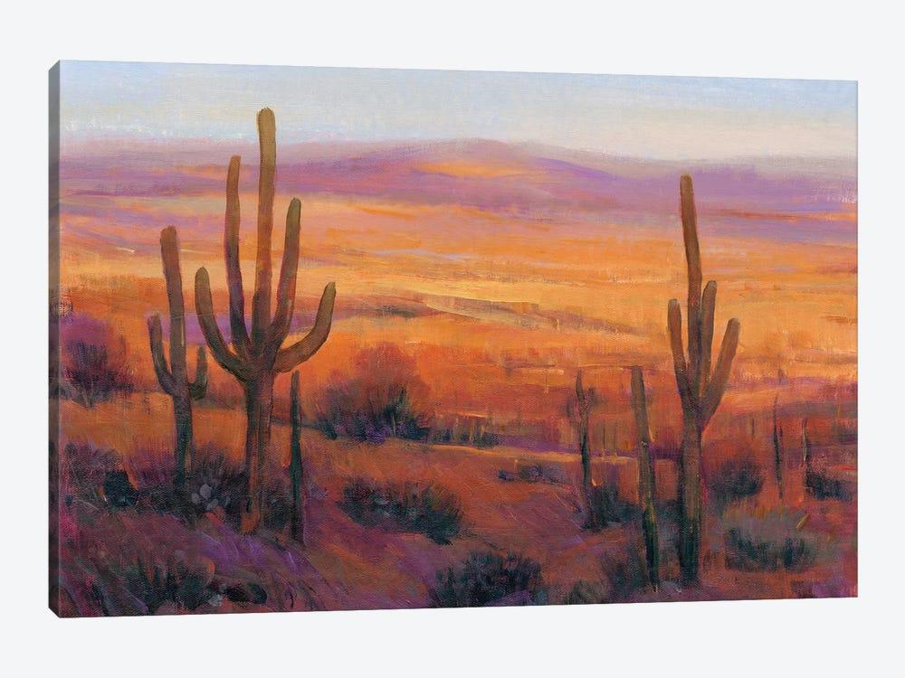 Desert Light II by Tim OToole 1-piece Canvas Art