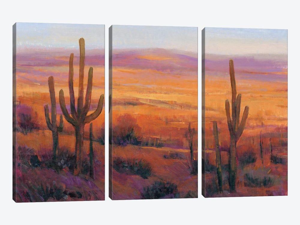 Desert Light II by Tim OToole 3-piece Canvas Art
