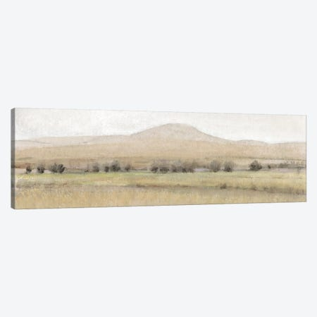 Dry Heat I Canvas Print #TOT460} by Tim OToole Canvas Art Print