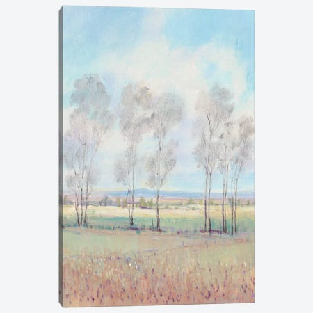 Forever Dreaming I 3-Piece Canvas #TOT464} by Tim OToole Canvas Art