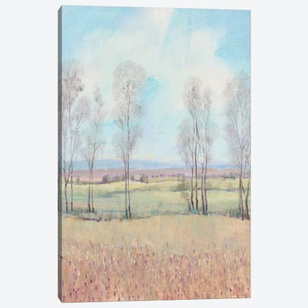 Forever Dreaming II Canvas Print #TOT465} by Tim OToole Canvas Artwork