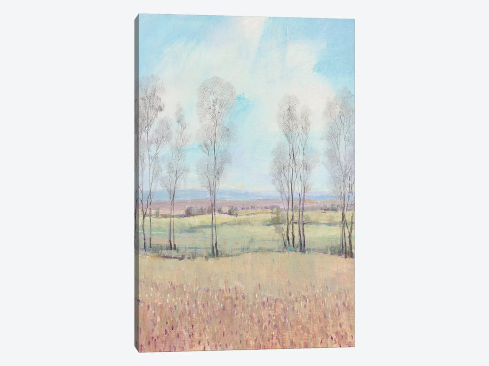 Forever Dreaming II by Tim OToole 1-piece Canvas Art Print