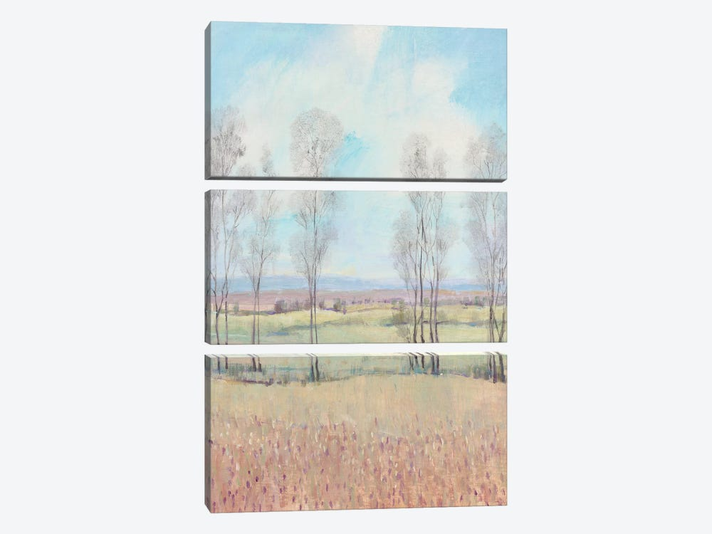 Forever Dreaming II by Tim OToole 3-piece Art Print