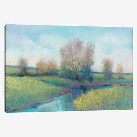 Hidden Stream I Canvas Print #TOT466} by Tim OToole Canvas Wall Art
