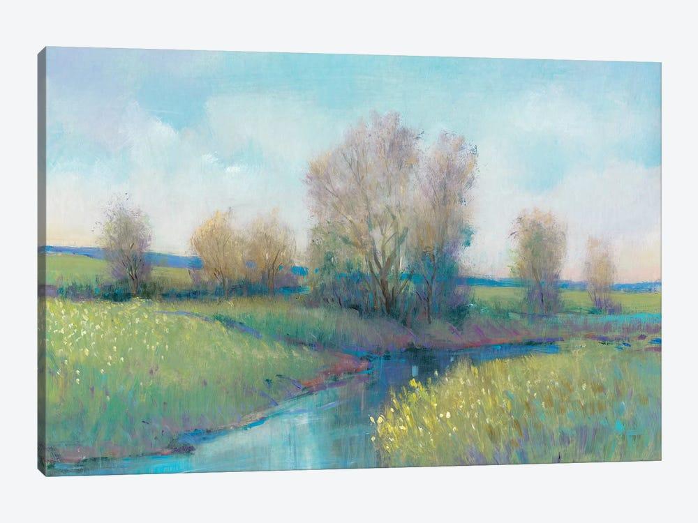 Hidden Stream I by Tim OToole 1-piece Canvas Artwork