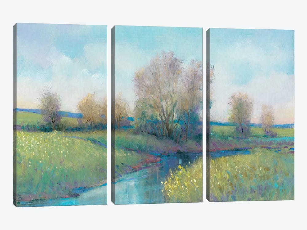 Hidden Stream I by Tim OToole 3-piece Canvas Wall Art