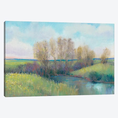 Hidden Stream II Canvas Print #TOT467} by Tim OToole Canvas Art