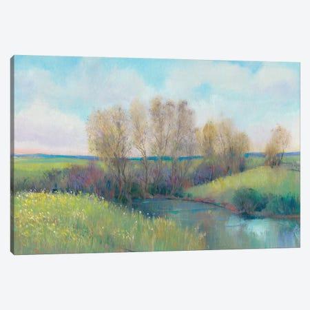 Hidden Stream II Canvas Print #TOT467} by Tim OToole Canvas Art