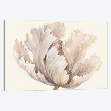 Monochromatic Tulip I Canvas Print #TOT468} by Tim OToole Canvas Print
