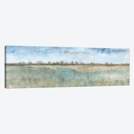 Open Field I Canvas Print #TOT470} by Tim OToole Canvas Art