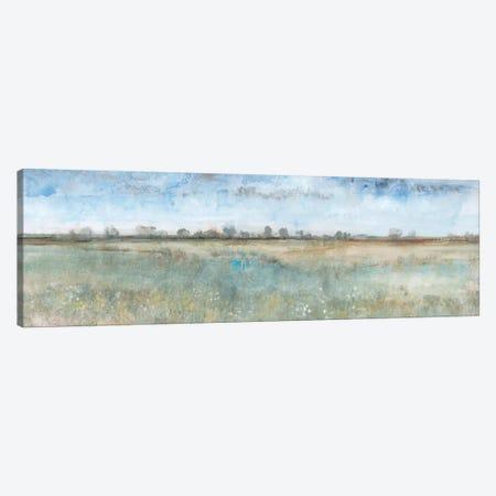 Open Field I Canvas Print #TOT470} by Tim OToole Canvas Art