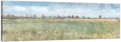 Open Field II Canvas Art Print