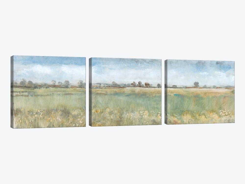 Open Field II by Tim OToole 3-piece Canvas Artwork
