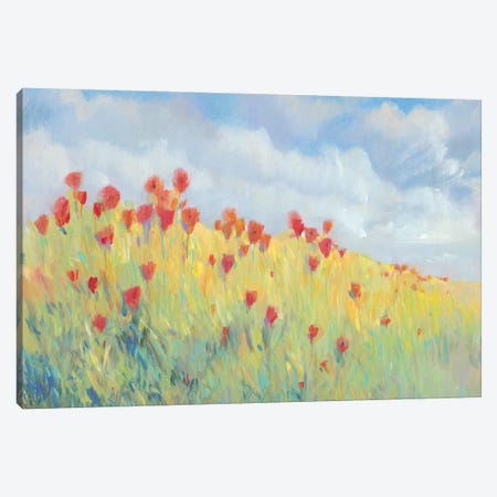 Summer Breeze Meadow I Canvas Print #TOT474} by Tim OToole Art Print