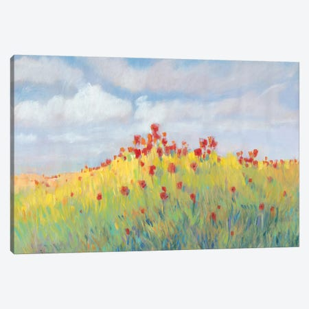 Summer Breeze Meadow II Canvas Print #TOT475} by Tim OToole Canvas Art Print