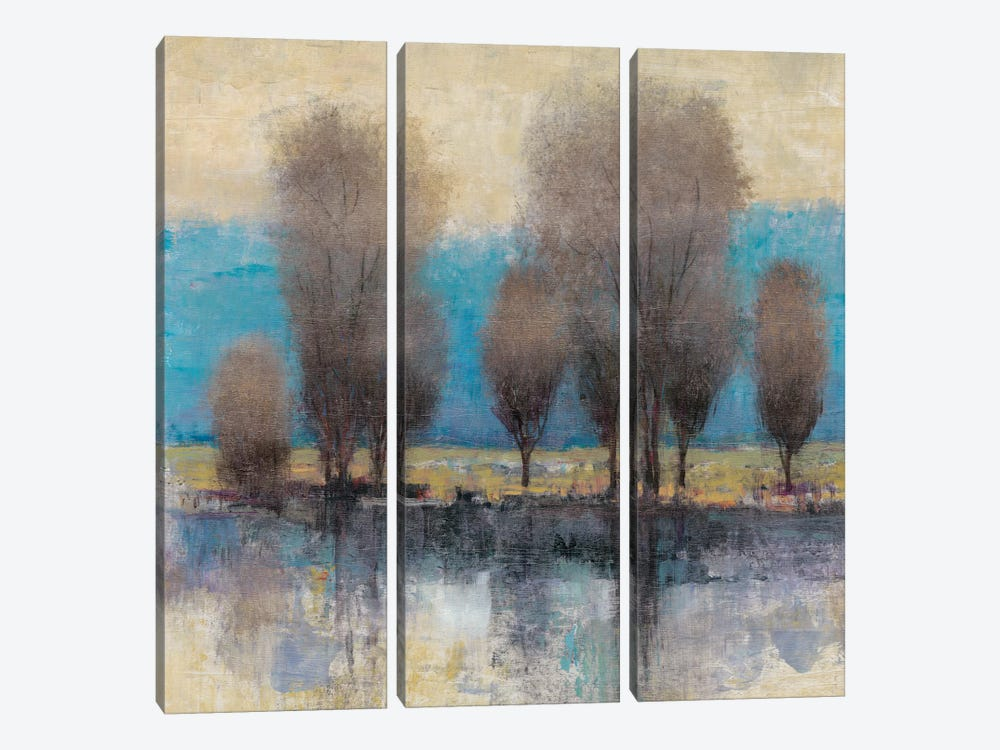 On The Horizon I by Tim O'Toole 3-piece Canvas Artwork