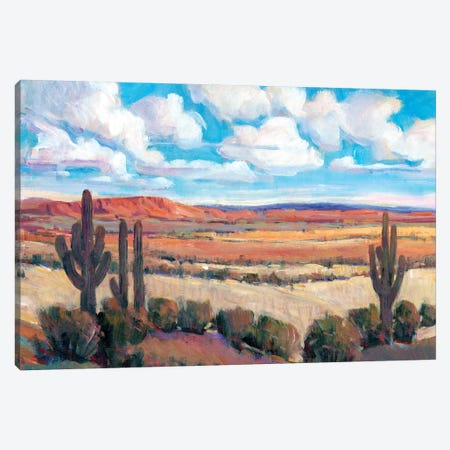 Desert Heat I Canvas Print #TOT482} by Tim OToole Canvas Art Print