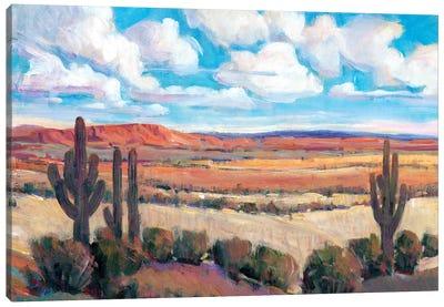 Desert Heat I Canvas Art Print