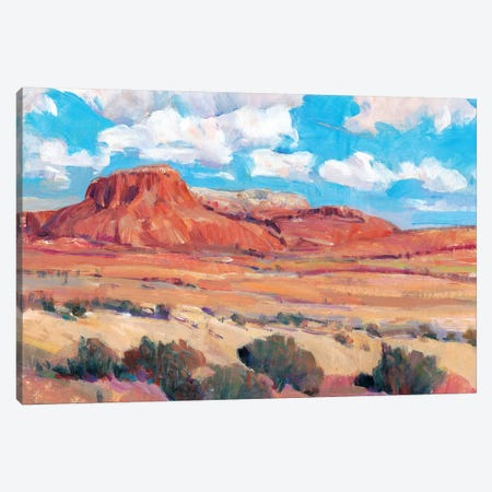 Desert Heat II Canvas Print #TOT483} by Tim OToole Canvas Print