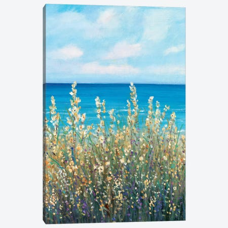 Flowers at the Coast I Canvas Print #TOT484} by Tim OToole Canvas Art