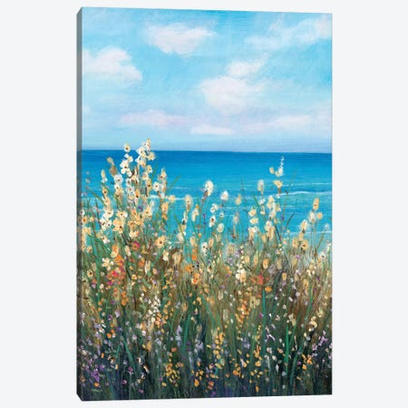 Flowers at the Coast II Canvas Print #TOT485} by Tim OToole Canvas Artwork