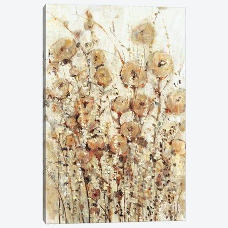 Garden Edge I Canvas Print #TOT488} by Tim OToole Canvas Art Print