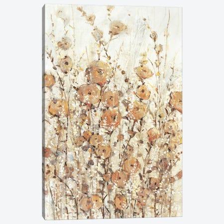 Garden Edge II Canvas Print #TOT489} by Tim OToole Canvas Art Print