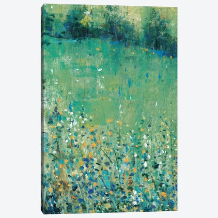 Lush Meadow I Canvas Print #TOT494} by Tim OToole Canvas Art Print