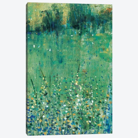 Lush Meadow II Canvas Print #TOT495} by Tim OToole Art Print