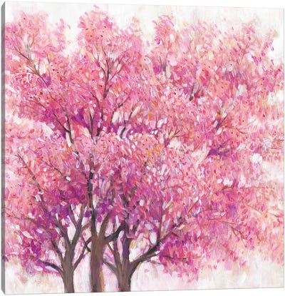 Pink Cherry Blossom Tree I Canvas Art Print