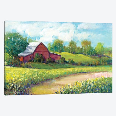 Rural America II 3-Piece Canvas #TOT503} by Tim OToole Canvas Artwork