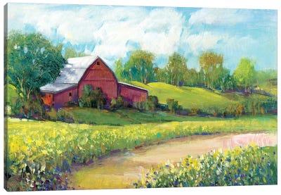 Rural America II Canvas Art Print