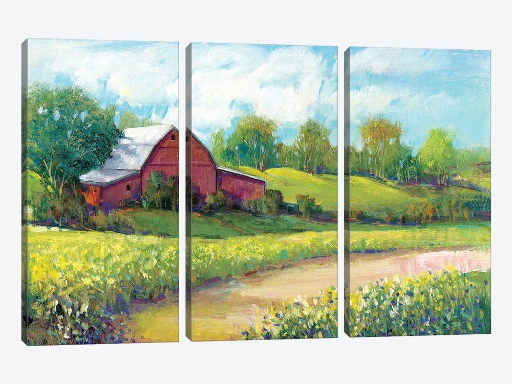Rural America II by Tim OToole 3-piece Canvas Artwork