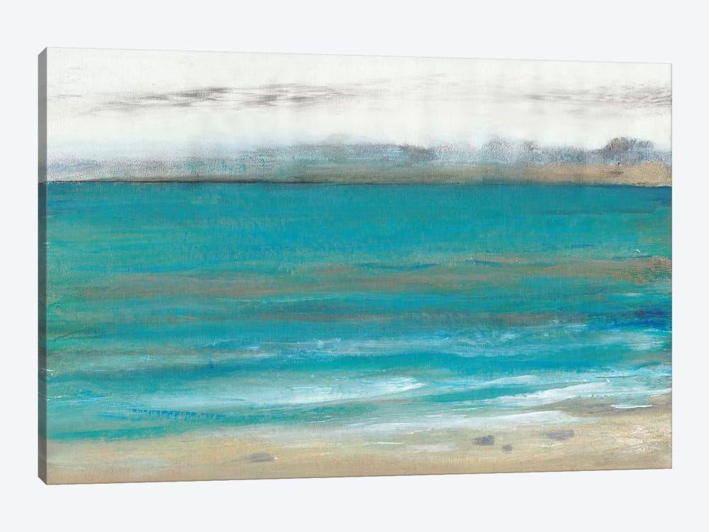 Seashore I by Tim O'Toole 1-piece Canvas Art Print