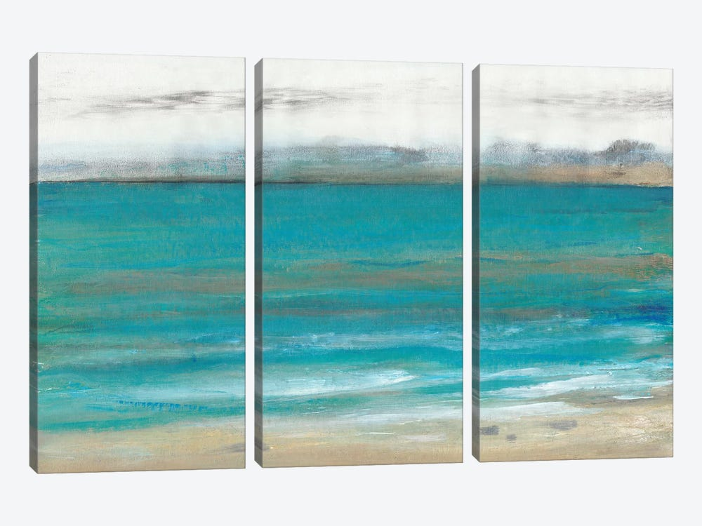 Seashore I by Tim O'Toole 3-piece Art Print
