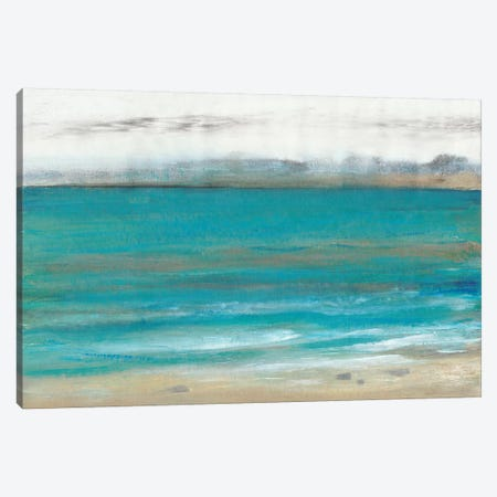 Seashore I Canvas Print #TOT504} by Tim OToole Art Print