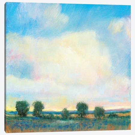 Summer Sky I Canvas Print #TOT510} by Tim OToole Art Print