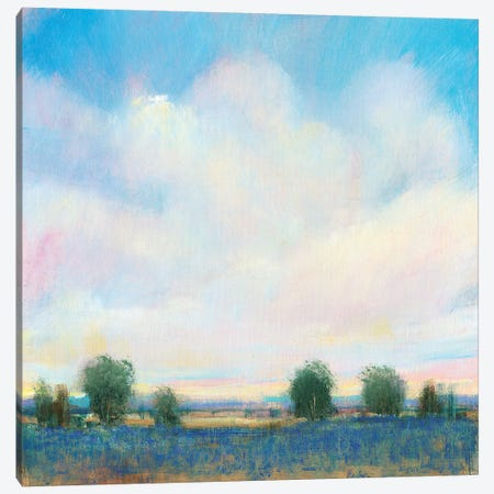 Summer Sky II 3-Piece Canvas #TOT511} by Tim OToole Art Print