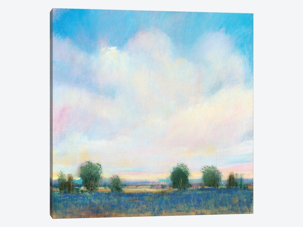 Summer Sky II by Tim OToole 1-piece Canvas Print