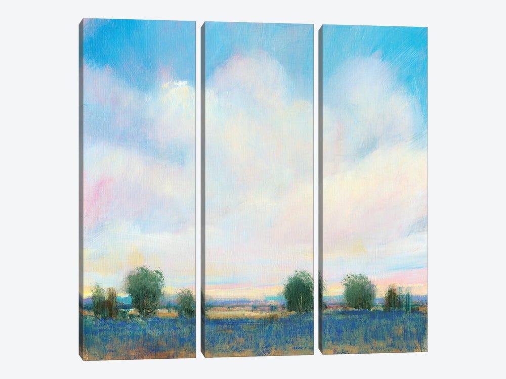 Summer Sky II by Tim OToole 3-piece Art Print